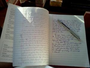 NaNoWriMo 2011 Notebook