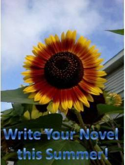 Join the official Write Your Novel this Summer Challenge (1/2)