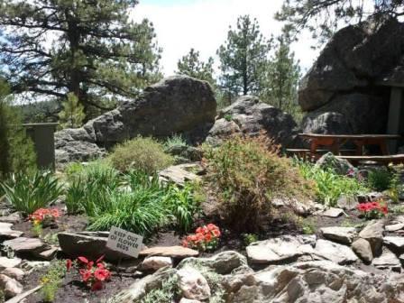Garden at the Alpine Slide
