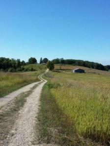 Dirt road through Horicon Marsh