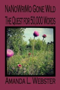 Cover Image - NaNoWriMo Gone Wild - The Quest for 50000 Words