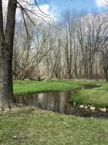 Pretty creek at Richfield Nature Park