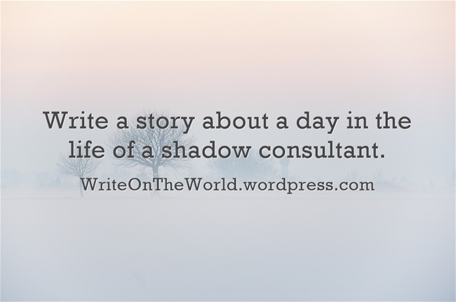 A day in the life of a shadow consultant