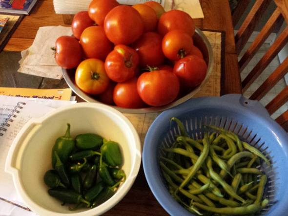 tomatos, peppers, and green beans